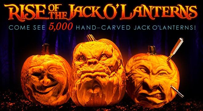 Pumpkin_Trio5000.jpg